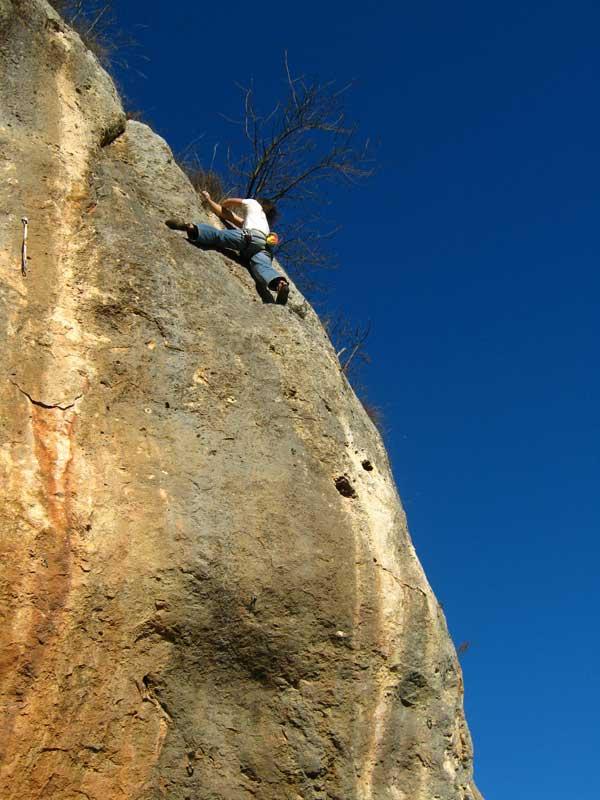 Tree Climbing Ferrara – Arboricoltura Perelli: arrampicata in parete