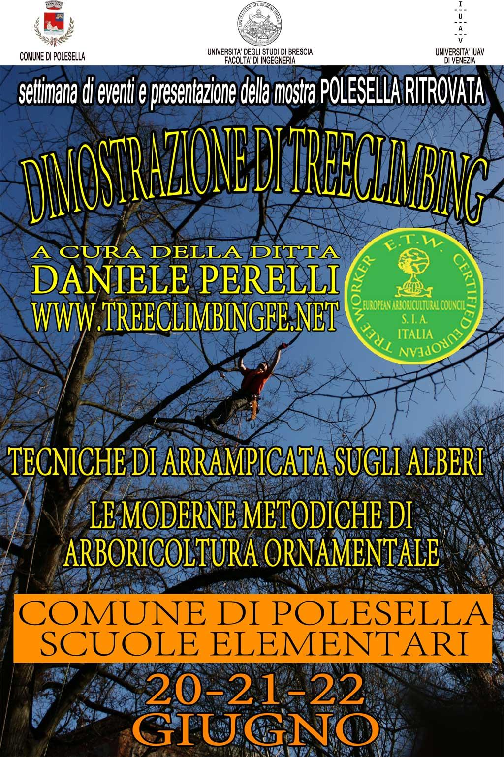 Tree Climbing Ferrara - Arboricoltura Perelli: comune di Polesella dimostrazione di treeclimbing