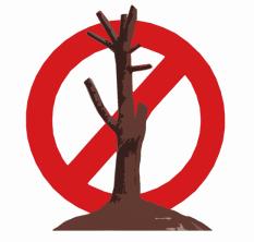 Tree Climbing Ferrara - Arboricoltura Perelli: potare alberi per ridurre rischi di caduta