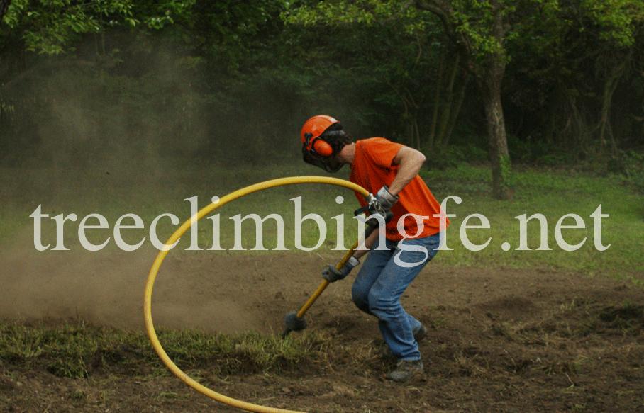Tree Climbing Ferrara - Arboricoltura Perelli: tecnologia AIR SPADE®