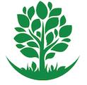 Tree Climbing Ferrara - Arboricoltura Perelli: Tree Care